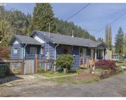 32262 SCAPPOOSE VERNONIA  HWY, Scappoose image