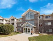 1321 Lake Drive W Unit #218, Chanhassen image