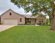 107 Black Walnut Cir, Georgetown image