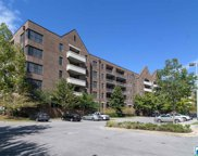 1040 Broadway St Unit 305, Homewood image