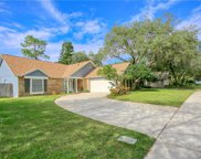 4732 Swansneck Place, Winter Springs image