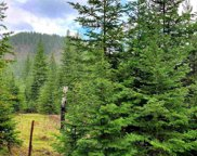 NNA  Peterson Rd Lot 2, Priest River image