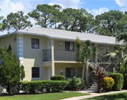 28150 Pine Haven Way Unit 25, Bonita Springs image