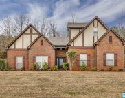 7979 Everetts Loop, Mccalla image