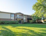 471 Raintree Court Unit 1A, Glen Ellyn image