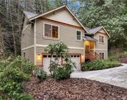 11 Pinto Creek Lane, Bellingham image