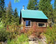 4450 Buck Creek, Loon Lake image