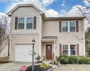 15717  Lakepoint Forest Drive Unit #44, Charlotte image