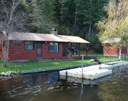 48091 E Deer Lake, Loon Lk image