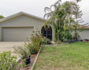 107 Timber Circle, Safety Harbor image