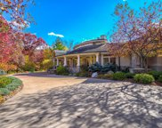 15 Red Forest Way, North Oaks image