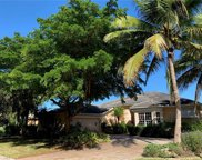 10551 CURRY PALM LN, Fort Myers image