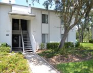 118 E Cypress Court Unit 18, Oldsmar image