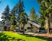 18524 9th St E, Lake Tapps image