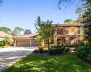 8678 Great Cove Drive, Orlando image