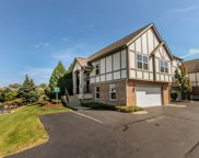 71 Rosehall Drive, Lake Zurich image