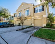 6738 Breezy Palm Drive, Riverview image