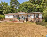 136 Fieldview Dr, Oneonta image