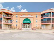 3232 Fremont Avenue N Unit #229, Minneapolis image