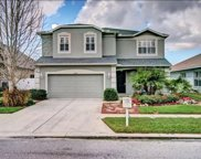12501 Cricklewood Drive, Spring Hill image