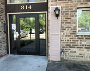 814 East Old Willow Road Unit 213, Prospect Heights image