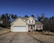 253 Country Forest Lane, Lyman image