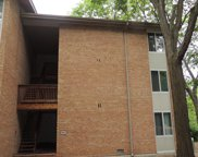 5821 Oakwood Drive Unit F, Lisle image