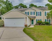 308 Black Willow Ct., Myrtle Beach image