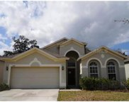 6649 Bluff Meadow Court, Zephyrhills image