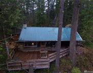 47313 SE 160th St, North Bend image