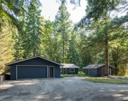 48303 SE Mt Si Rd, North Bend image