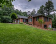 4312 Spring Cove Lane, Young Harris image