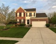 3842 Golden Meadow  Court, Batavia Twp image