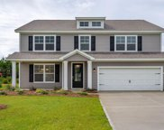 10080 Hamilton Branch Loop, Myrtle Beach image