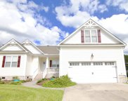 141 Candlewood Drive, Hampstead image