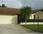 311 Reynolds CT, Naples image