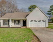 102 W Fall River Way, Simpsonville image
