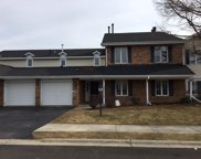 7205 Birchwood Court Unit A, Willowbrook image