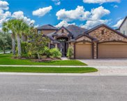 19361 Yellow Clover Drive, Tampa image