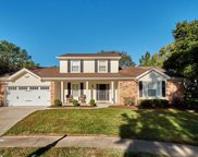 14827 Pheasant Hill, Chesterfield image
