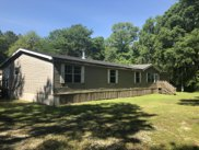 12398 KINGS FOREST CT, Jacksonville image