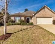 1022 Narrows Point Dr, Birmingham image