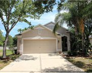 8317 Moccasin Trail Drive, Riverview image