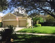 2203 Morganside Way, Valrico image