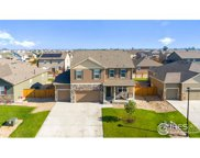 3634 Torch Lily St, Wellington image