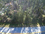 175 Point Pleasant Drive, Palm Coast image