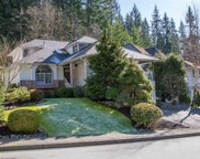 20 Flavelle Drive, Port Moody image