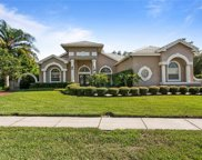4174 Eagle Watch Boulevard, Palm Harbor image