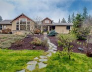16714 1st Ave SE, Bothell image