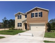16511 Centipede Street, Clermont image